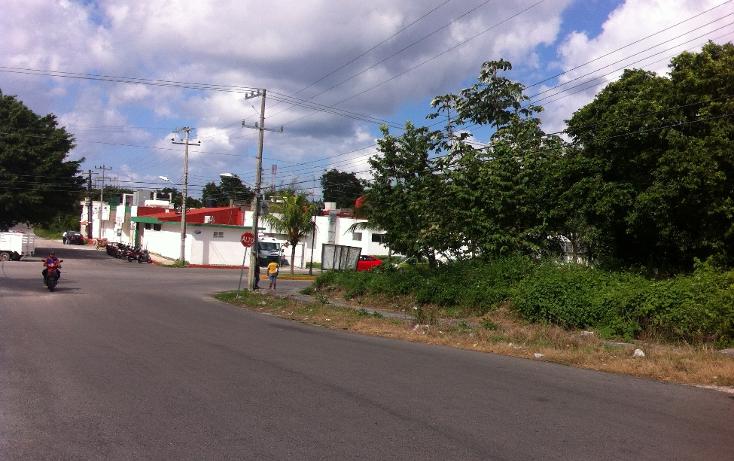 Foto de terreno habitacional en venta en  , andr?s q. roo, cozumel, quintana roo, 1051981 No. 18