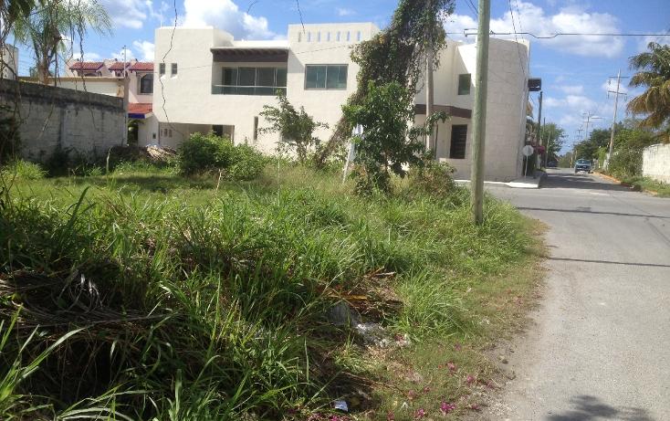 Foto de terreno habitacional en venta en  , andrés q. roo, cozumel, quintana roo, 1052041 No. 02