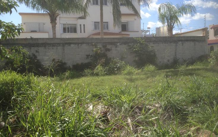Foto de terreno habitacional en venta en  , andrés q. roo, cozumel, quintana roo, 1052041 No. 03