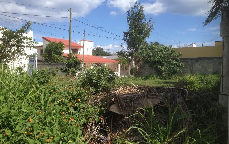 Foto de terreno habitacional en venta en  , andrés q. roo, cozumel, quintana roo, 1052041 No. 04