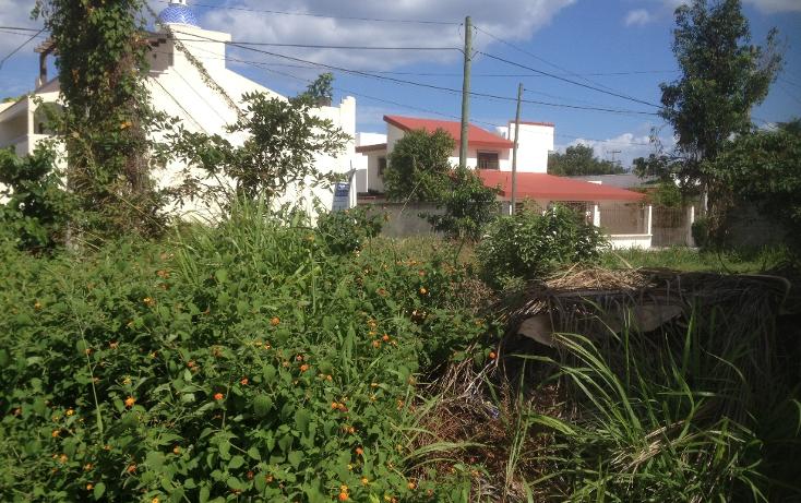 Foto de terreno habitacional en venta en  , andrés q. roo, cozumel, quintana roo, 1052041 No. 05