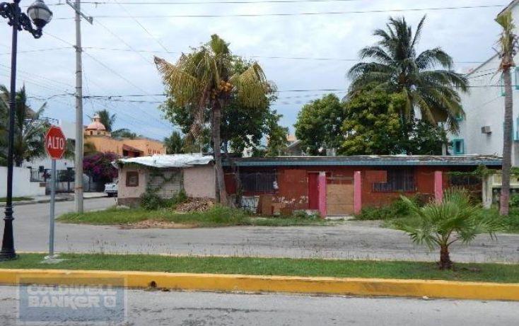 Foto de terreno habitacional en venta en, andrés q roo, cozumel, quintana roo, 1846420 no 02