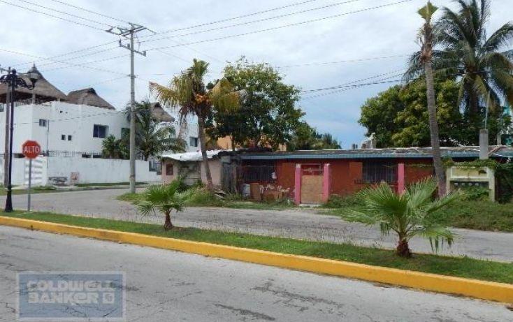 Foto de terreno habitacional en venta en, andrés q roo, cozumel, quintana roo, 1846420 no 04