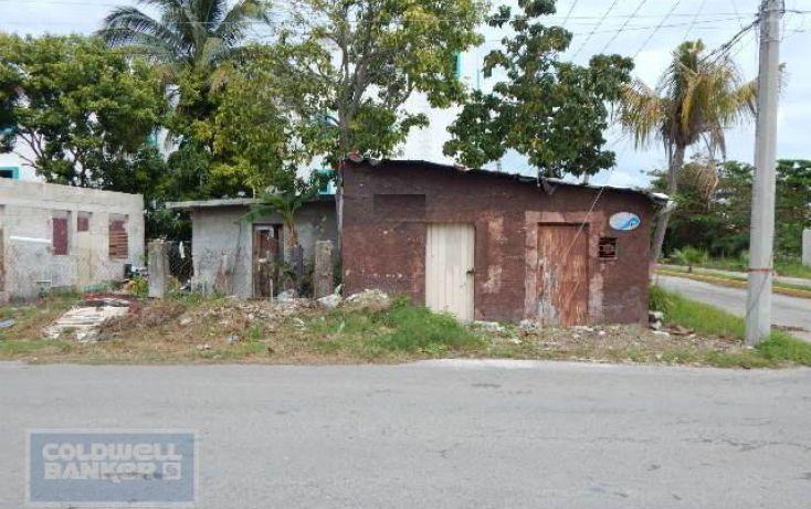 Foto de terreno habitacional en venta en, andrés q roo, cozumel, quintana roo, 1846420 no 06