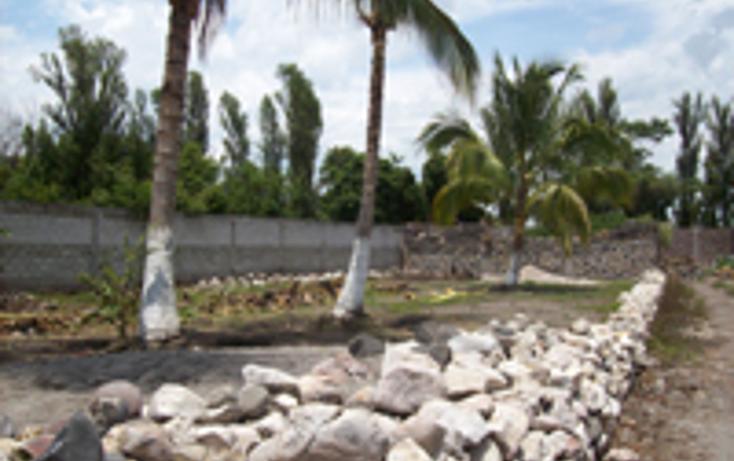 Foto de terreno comercial en venta en  , anenecuilco centro, ayala, morelos, 1080359 No. 01