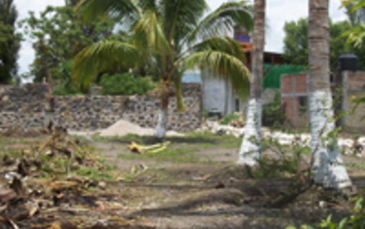 Foto de terreno comercial en venta en  , anenecuilco centro, ayala, morelos, 1080359 No. 02