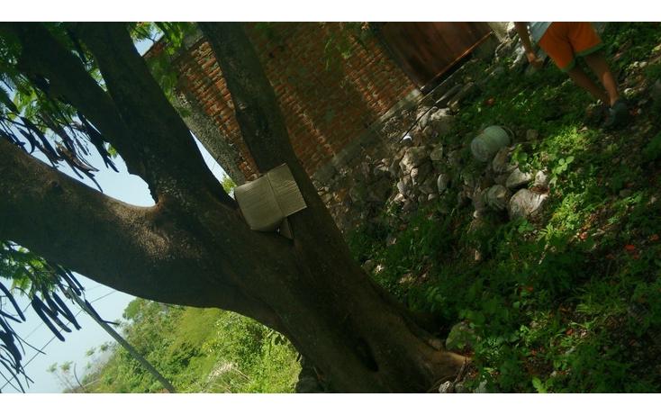 Foto de terreno habitacional en venta en  , anenecuilco centro, ayala, morelos, 1363079 No. 03