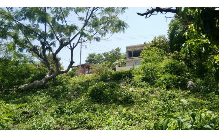 Foto de terreno habitacional en venta en  , anenecuilco centro, ayala, morelos, 1363079 No. 07