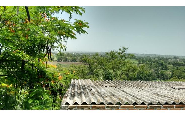 Foto de terreno habitacional en venta en  , anenecuilco centro, ayala, morelos, 1363079 No. 08