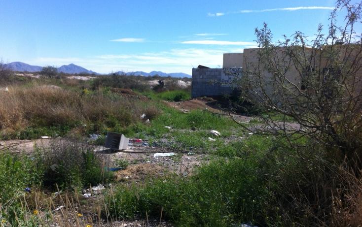 Foto de terreno comercial en venta en  , anna, torre?n, coahuila de zaragoza, 1265395 No. 01