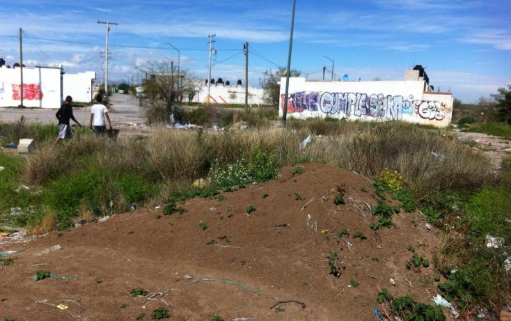 Foto de terreno comercial en venta en  , anna, torre?n, coahuila de zaragoza, 1265395 No. 05