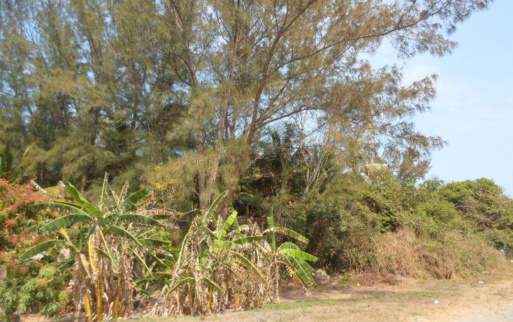 Foto de terreno comercial en venta en, anton lizardo, alvarado, veracruz, 1070327 no 05