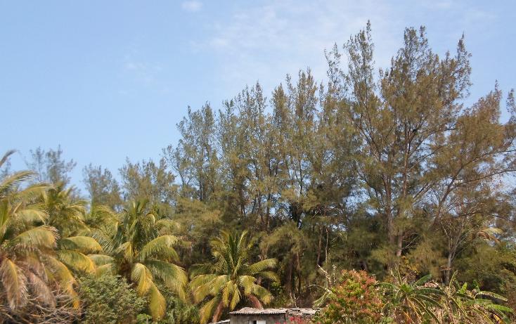 Foto de terreno comercial en venta en  , anton lizardo, alvarado, veracruz de ignacio de la llave, 1070327 No. 02