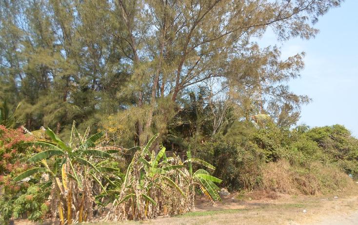 Foto de terreno comercial en venta en  , anton lizardo, alvarado, veracruz de ignacio de la llave, 1070327 No. 05