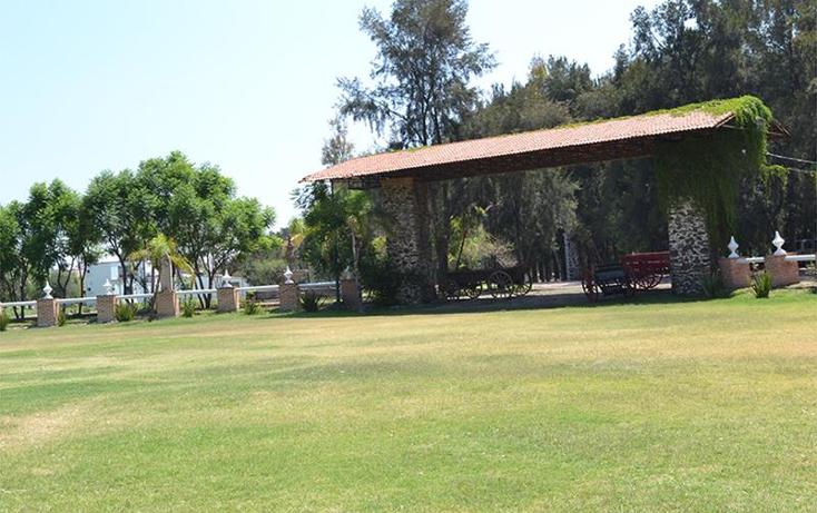 Foto de terreno habitacional en venta en  , antonio plaza, apaseo el grande, guanajuato, 1087061 No. 13