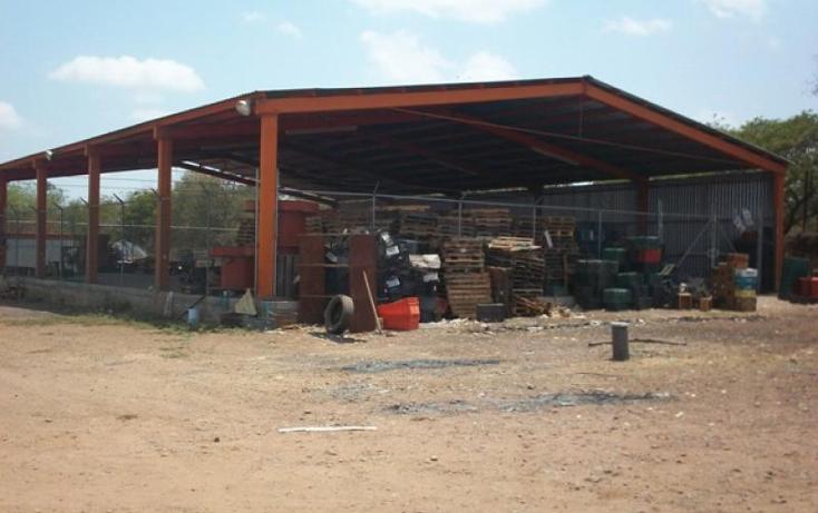 Foto de terreno comercial en venta en  , antonio toledo corro, culiac?n, sinaloa, 1837268 No. 06