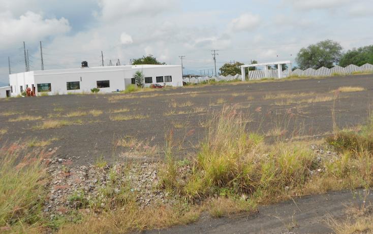 Foto de terreno comercial en venta en  , antunez, par?cuaro, michoac?n de ocampo, 1640990 No. 04