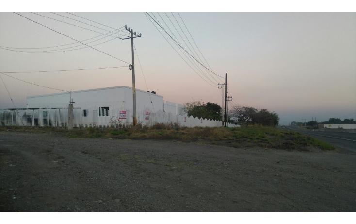 Foto de terreno comercial en venta en  , antunez, par?cuaro, michoac?n de ocampo, 1640990 No. 08