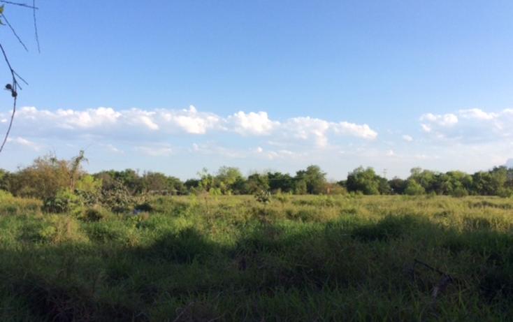 Foto de terreno comercial en renta en  , apodaca centro, apodaca, nuevo león, 1187401 No. 13