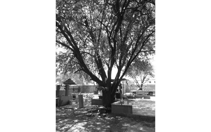 Foto de terreno comercial en venta en  , apodaca centro, apodaca, nuevo león, 1917096 No. 10