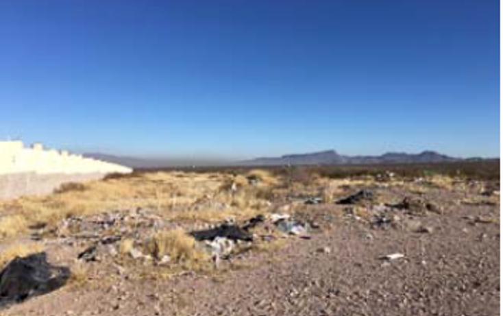Foto de terreno comercial en venta en  , aquiles serdán, aquiles serdán, chihuahua, 1974754 No. 07