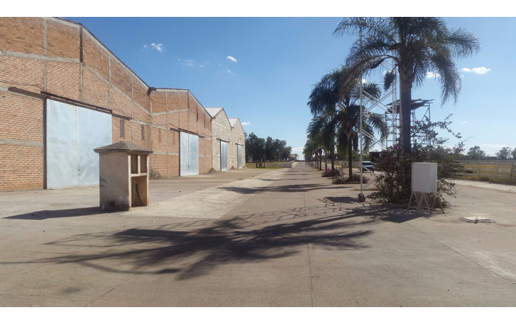 Foto de nave industrial en venta en  , arandas centro, arandas, jalisco, 1555954 No. 05
