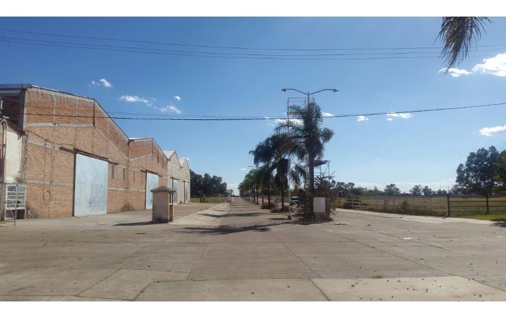 Foto de nave industrial en venta en  , arandas centro, arandas, jalisco, 1555954 No. 06