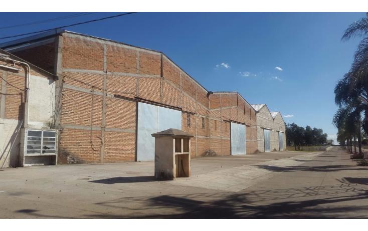 Foto de nave industrial en venta en  , arandas centro, arandas, jalisco, 1555954 No. 10
