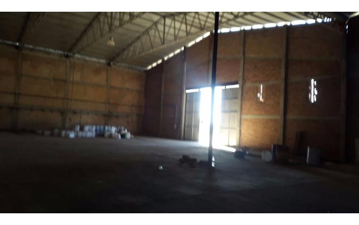 Foto de nave industrial en venta en  , arandas centro, arandas, jalisco, 1555954 No. 14