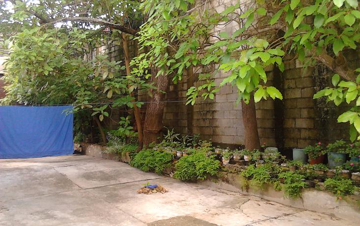 Foto de casa en venta en  , árbol grande, ciudad madero, tamaulipas, 1781040 No. 03