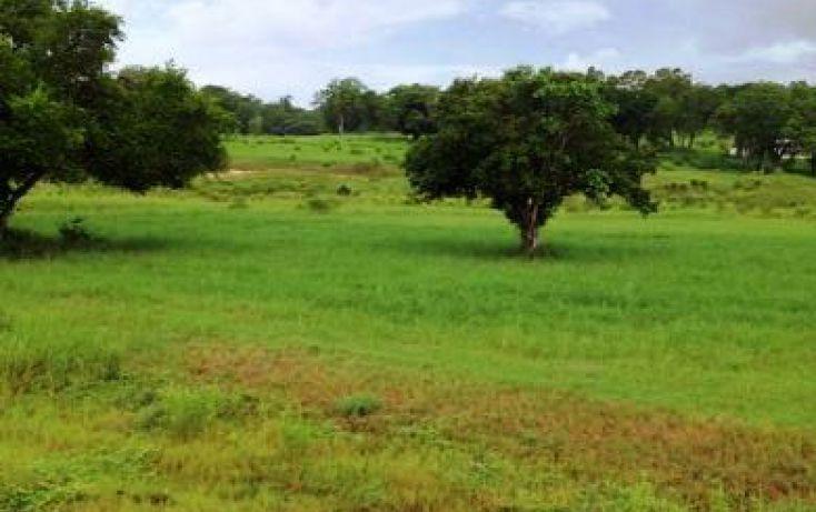 Foto de terreno habitacional en venta en, arboledas, aldama, tamaulipas, 1976218 no 04