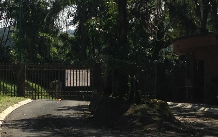 Foto de terreno habitacional en venta en  , arboledas san pedro, coatepec, veracruz de ignacio de la llave, 1099639 No. 02