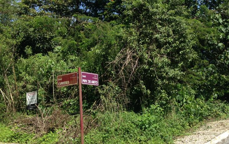 Foto de terreno habitacional en venta en  , arboledas san pedro, coatepec, veracruz de ignacio de la llave, 1099639 No. 03