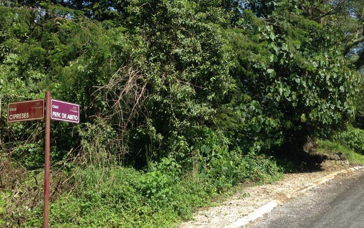 Foto de terreno habitacional en venta en  , arboledas san pedro, coatepec, veracruz de ignacio de la llave, 1099639 No. 04