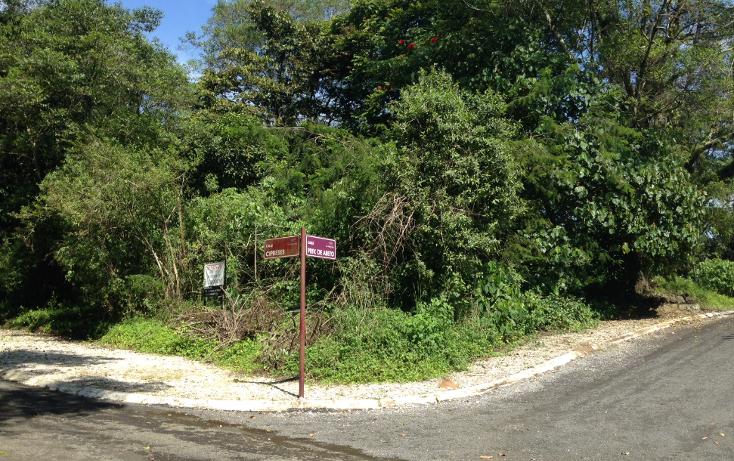 Foto de terreno habitacional en venta en  , arboledas san pedro, coatepec, veracruz de ignacio de la llave, 1099639 No. 05