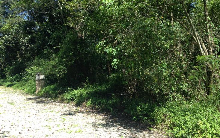Foto de terreno habitacional en venta en  , arboledas san pedro, coatepec, veracruz de ignacio de la llave, 1099639 No. 06