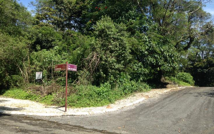 Foto de terreno habitacional en venta en  , arboledas san pedro, coatepec, veracruz de ignacio de la llave, 1099639 No. 07