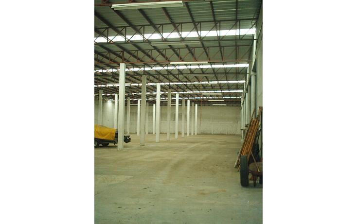 Foto de nave industrial en renta en  , arenal, tampico, tamaulipas, 1058055 No. 04