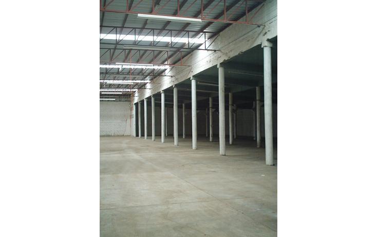 Foto de nave industrial en renta en  , arenal, tampico, tamaulipas, 1058055 No. 05