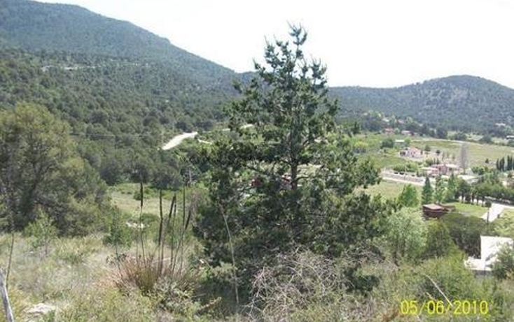 Foto de terreno habitacional en venta en  , arteaga centro, arteaga, coahuila de zaragoza, 1078467 No. 05