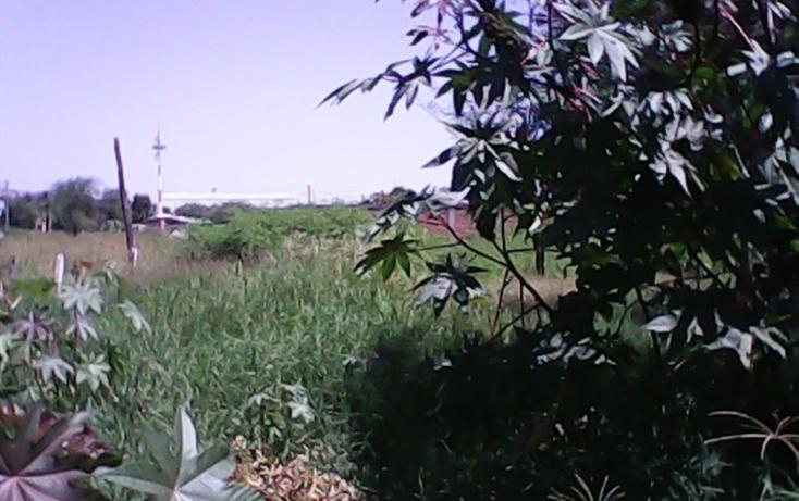 Foto de terreno habitacional en venta en  , artesanos oriente, san pedro tlaquepaque, jalisco, 1860092 No. 06