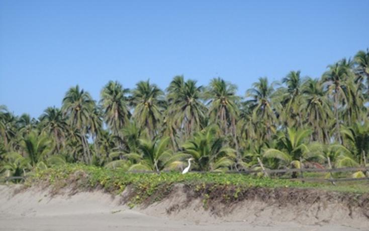 Foto de terreno comercial en venta en  , aserradero, lázaro cárdenas, michoacán de ocampo, 1108623 No. 04
