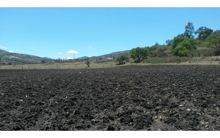 Foto de terreno comercial en venta en  , atapaneo, morelia, michoacán de ocampo, 1829382 No. 05