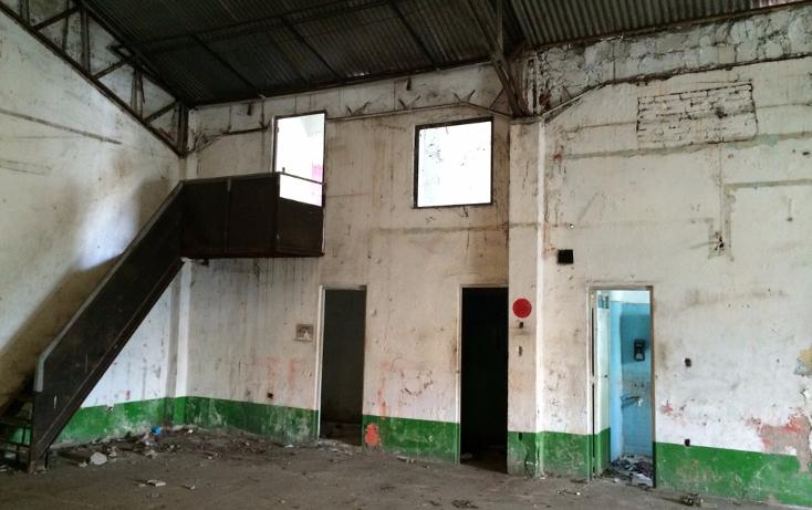 Foto de nave industrial en renta en  , atasta, centro, tabasco, 1432029 No. 03