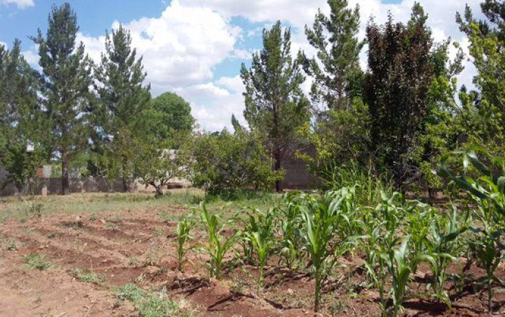 Foto de terreno habitacional en venta en, atenas i, ii, iii, iv, v y vi, chihuahua, chihuahua, 1467645 no 12