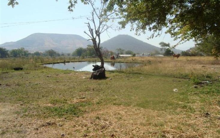 Foto de terreno habitacional en venta en  -, atlacholoaya, xochitepec, morelos, 1105331 No. 01