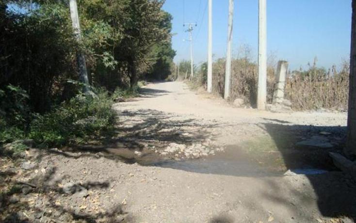 Foto de terreno habitacional en venta en  -, atlacholoaya, xochitepec, morelos, 1105331 No. 02