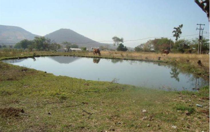 Foto de terreno habitacional en venta en , atlacholoaya, xochitepec, morelos, 1105331 no 06