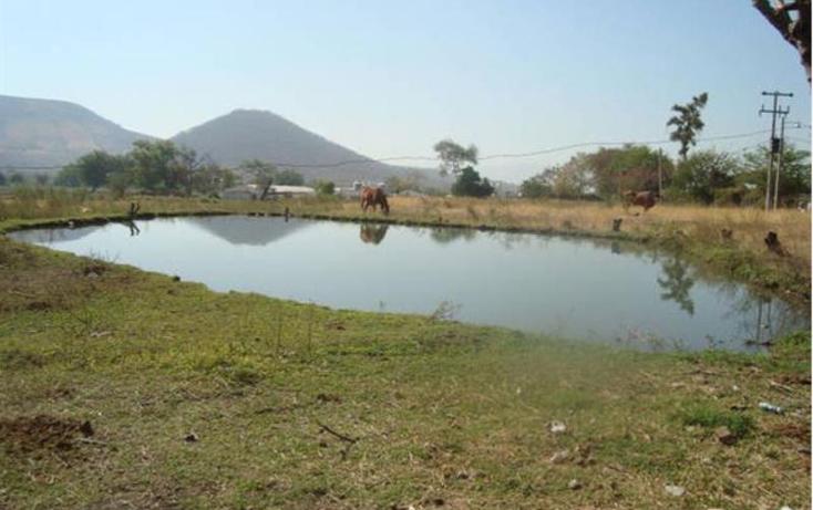 Foto de terreno habitacional en venta en  -, atlacholoaya, xochitepec, morelos, 1105331 No. 06