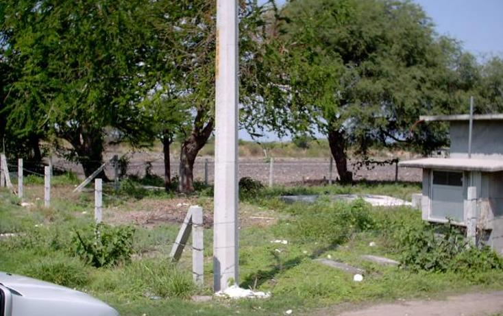 Foto de terreno habitacional en venta en  , atlacholoaya, xochitepec, morelos, 1145355 No. 05
